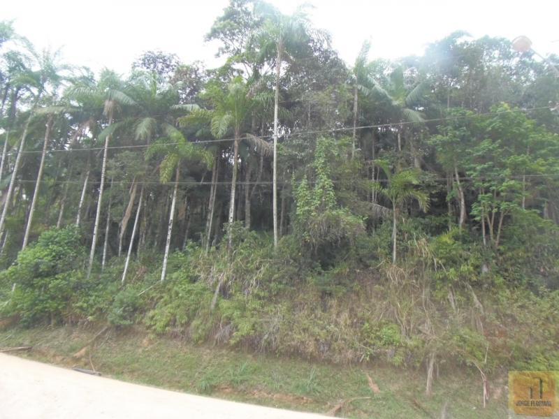 Guabiruba - São Pedro
